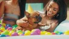 "T-Pain Throws His Dog A Perfect Party In ""It's My Dog Birthday"" Visual"