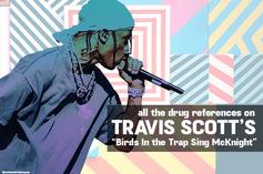 """All The Drug References On Travis Scott's """"Birds In The Trap Sing McKnight"""""""