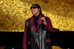 "Stevie Wonder Speaks On Black Lives Matter Movement: ""We Can Make A Change"""