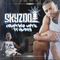 Skyzoo - Counting Until It Hurts (Freestyle)