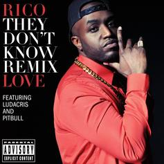 Rico Love - They Don't Know (Dance Remix) Feat. Ludacris & Pitbull