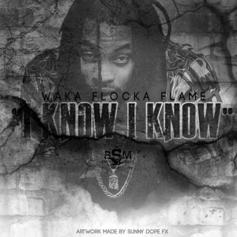 Waka Flocka - I Know (Freestyle)