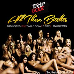 Waka Flocka - All These Bitches  Feat. Future