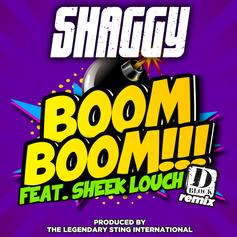 Shaggy - Boom Boom (Remix) Feat. Sheek Louch & Shhean