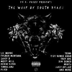DJ E-Feezy - The Wolf Of South Beach
