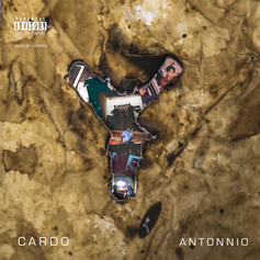 Cardo Antonnio - We Shouldn't