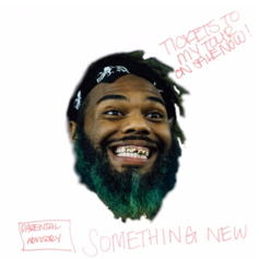 Rome Fortune - Something New