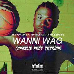 Mir Fontane & Ish Williams - Wanni Wag (Charlie Heat Version) Feat. Mike Zombie