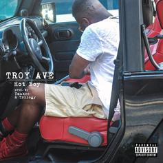 Troy Ave - Hot Boy