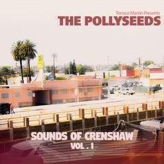 Terrace Martin & The Pollyseeds - Sounds of Crenshaw Vol. 1 [Album Stream]