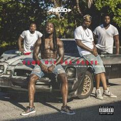 Ace Hood - Came Wit The Posse