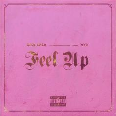 """YG Joins Pia Mia On Mary J. Blige Flip """"Feel Up"""""""