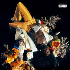 "Kojey Radical Makes A Promising Delivery On ""Cashmere Tears"" Project"