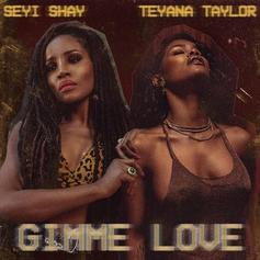 "Teyana Taylor Crosses Borders To Find Seyi Shay On ""Gimme Love"" Remix"