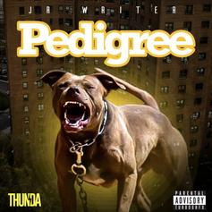 """JR Writer Goes In On His Haters On """"Pedigree"""""""