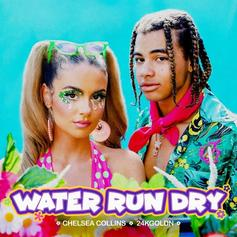 "Chelsea Collins & 24kGoldn Make A Great Team On ""Water Run Dry"""