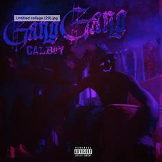 """Calboy Is All About His """"Gang Gang"""""""