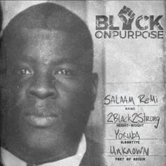 """Salaam Remi Enlists Nas, Black Thought & More For """"Black On Purpose"""""""