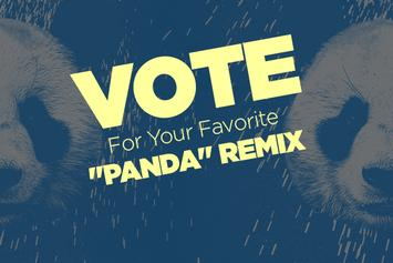 """Vote For Your Favorite """"Panda"""" Remix"""