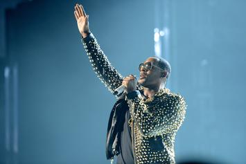 R. Kelly Cult Members Aren't Captives, Just In It For The Luxury: Report