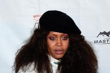 Erykah Badu Criticizes Papoose For Use Of Unauthorized Vocal Samples