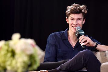 """Shawn Mendes Insists He's Not Gay: """"I Am A Little More Feminine"""""""