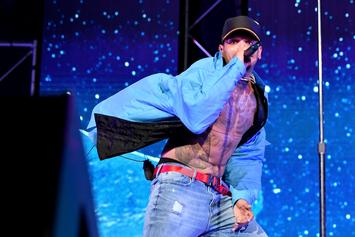 Chris Brown Hit With Lawsuit For Stiffing Tour Wardrobe Designer: Report