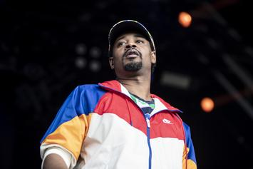 """Danny Brown Performs New Song From """"uknowhatimsayin?"""""""