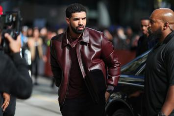 """Drake Fan Suing Rapper For """"Serious"""" Brain Injuries She Got At His Concert: Report"""