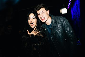 "Camila Cabello Says ""I Love You"" To Shawn Mendes On Singer's 21st Birthday"