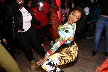 Megan Thee Stallion Got In Trouble For Twerking In College