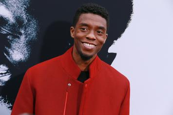 Chadwick Boseman Axed Potential Movie With Tessa Thompson Over Slave Roles